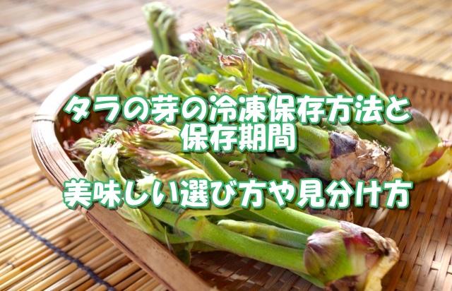 タラの芽の冷凍保存方法と保存期間。美味しい選び方や見分け方